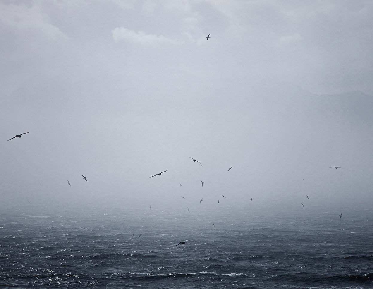 Marzena Skubatz Photography The Sea in Me